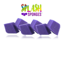 Picture of Splash Sponge - Pointed Petal - 6 Pack