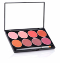 Picture of Mehron L.I.P. Cream Palette 8 Colours -DAY (48g)